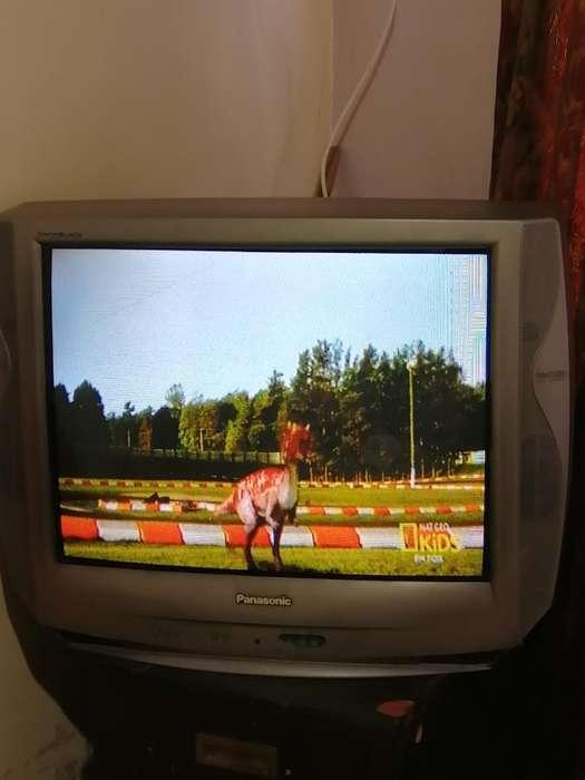 Vendo Tv Panasonic de 24