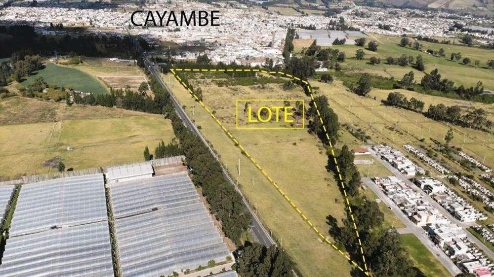 Macrolote Via Cayambe, Pichincha