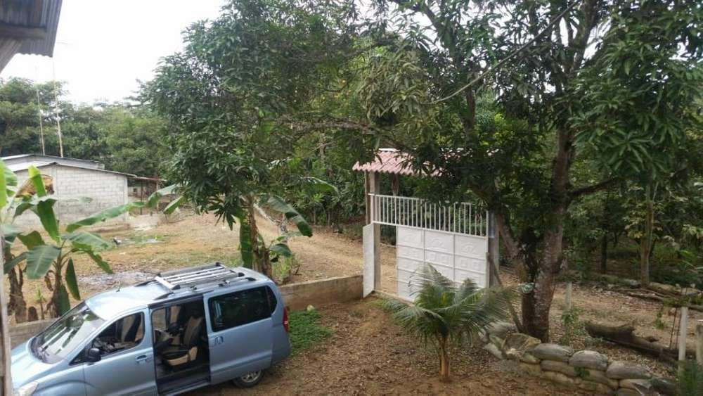 Finca en venta 2.83 hectáreas Babahoyo parroquia Febres Cordero