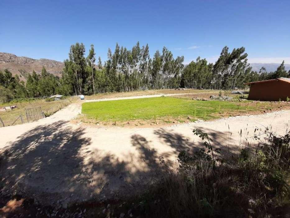 Vendo lostes de terreno para casa de campo en Shaullo Chico
