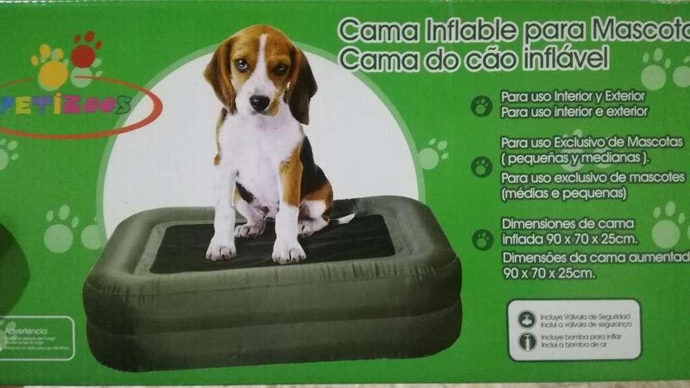 Cama Inflable para Perros