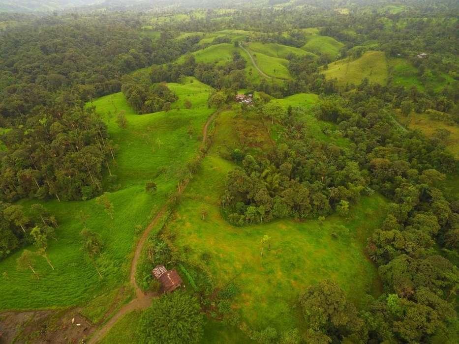 Hacienda Ganadera a 4 Km de Las Mercedes