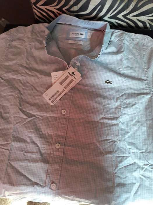 Camisas Lacoste, Polo, Tommy, Hollister