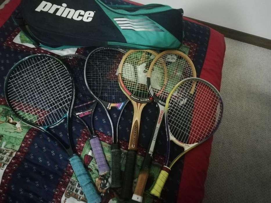6 Raquetas Profesionales