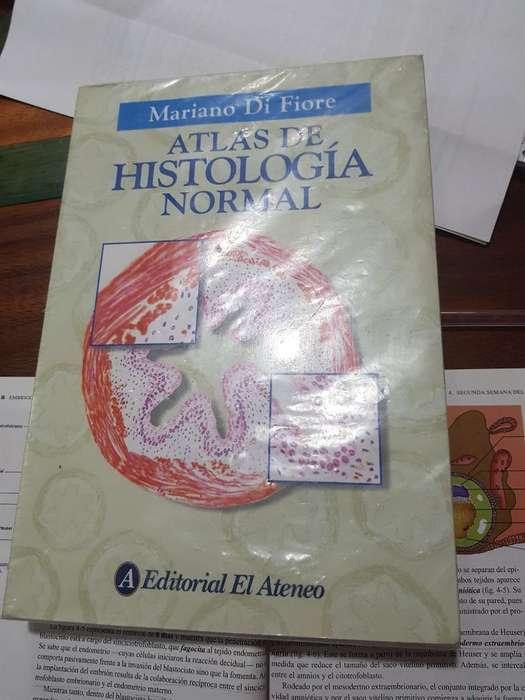 Atlas Histología Difiore