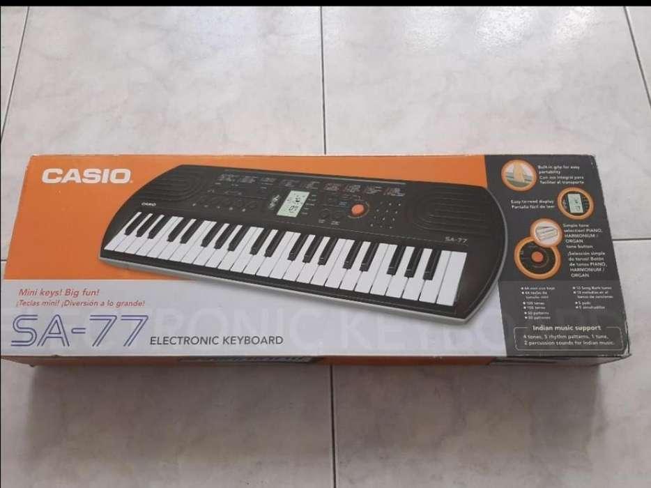 Organeta Casio Sa - 77