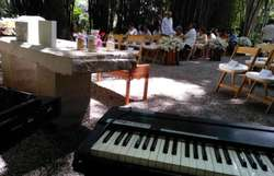 Serenatas, Musica Todo Genero.
