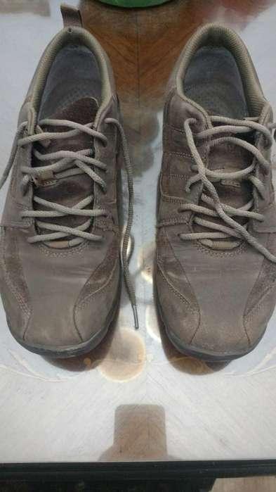 para Papa Zapatos Cat 42