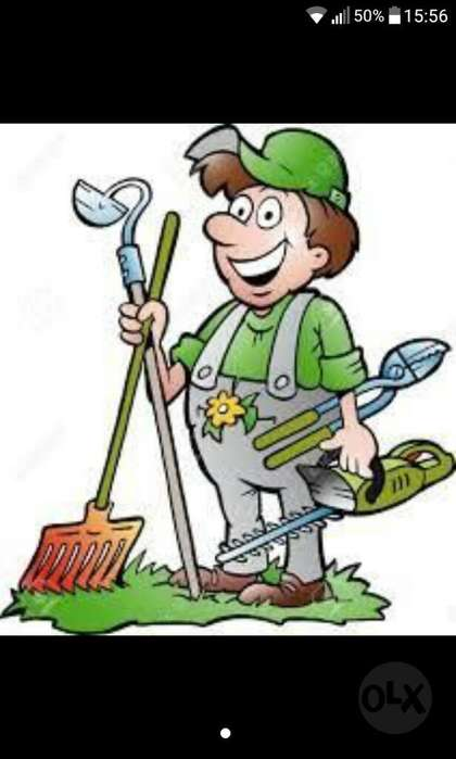Se Ofrece Trabajos de Jardineria
