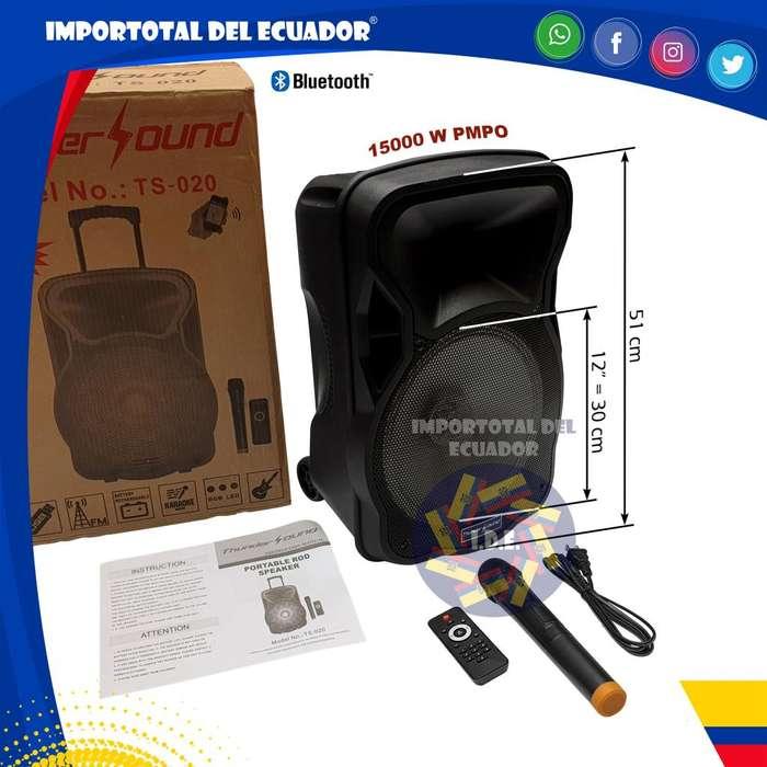 Parlante recargable 12'' bluetooth ''nuevo'' FM, lector memorias, micrófono karaoke, guitarra in / Thunder Sound TS 020