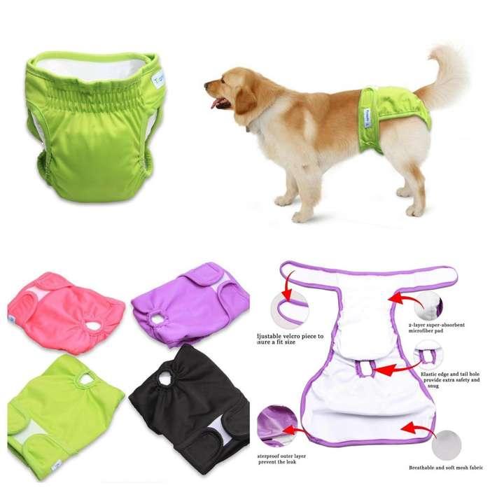 Pañal Reusable para Perros