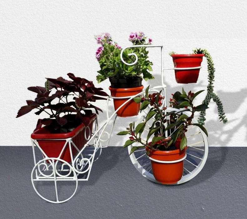 Bicicleta para jardin Maceta Materas