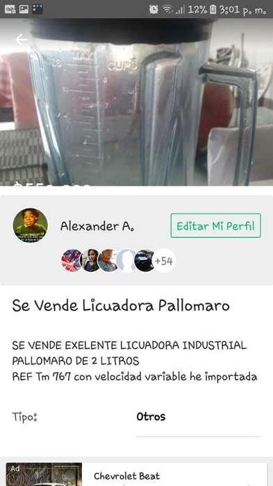 Vendo Licuadora Pallomaro