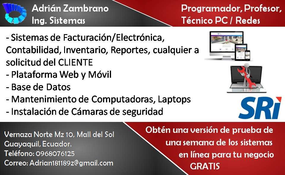 Ingeniero de Sistemas, Programador web y escritorio, base de datos