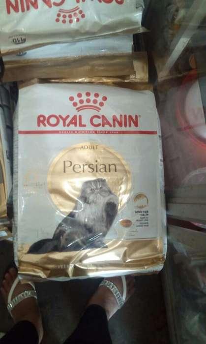 Royal Canin Persa de 10kg