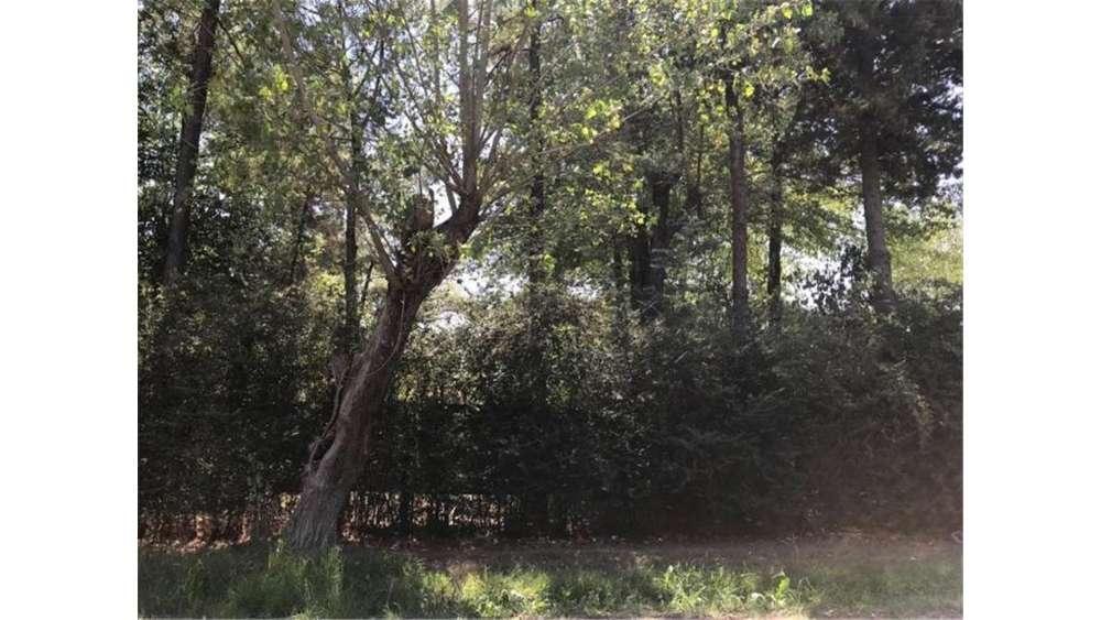 Houssay S/N - UD 37.000 - Terreno en Venta