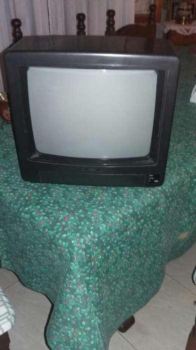 <strong>televisor</strong> 14