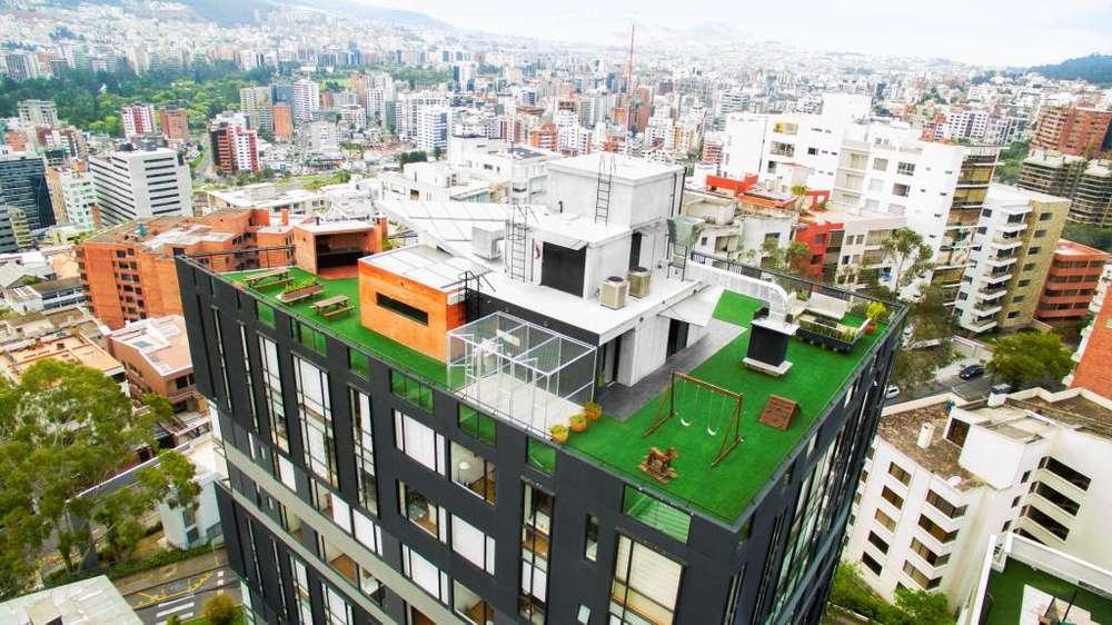 Césped Artificial Sintético Instalación para jardines Envíos a todo Loja