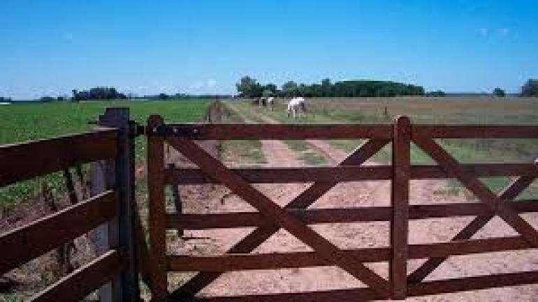 Venta. <strong>campo</strong> mixto agrÃcola ganadero, 340 Ha. Costa Uruguay, Gualeguaychú.