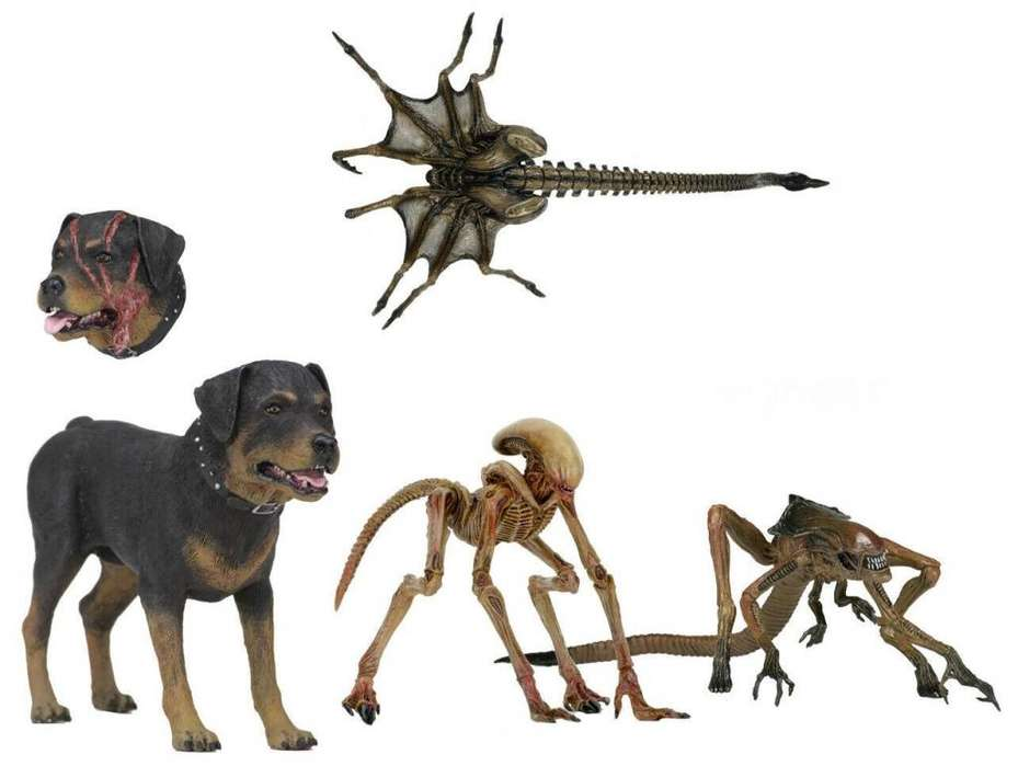Alien creature pack alien 3 alien reina alien dog alien perro