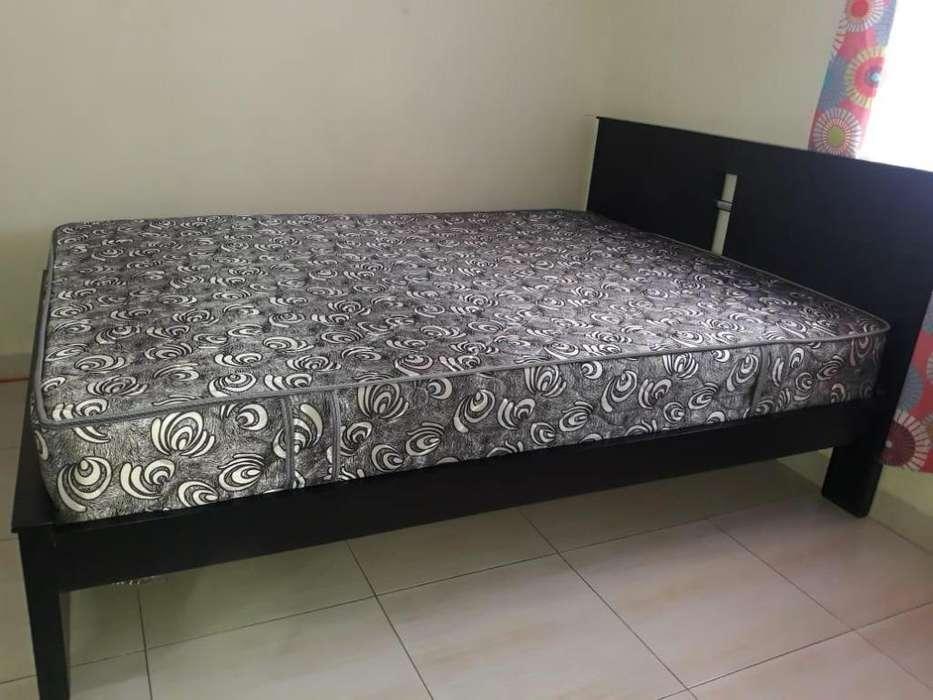 cama colchon
