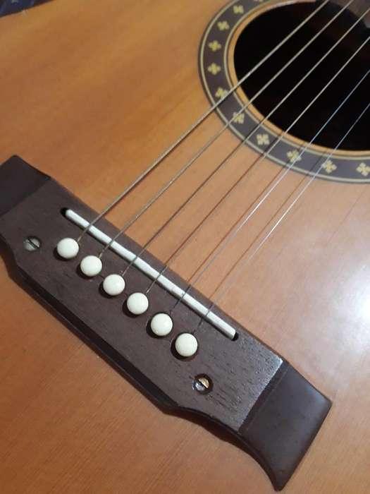 Guitarra Electroacustica C115 Ec
