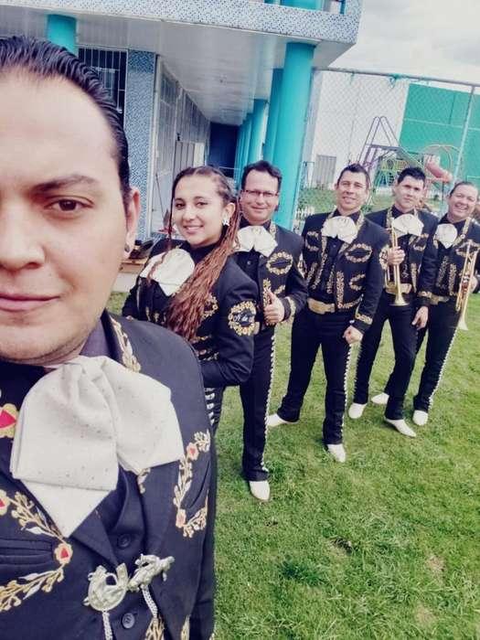Mariachi Grupo Profesional Y Elegante