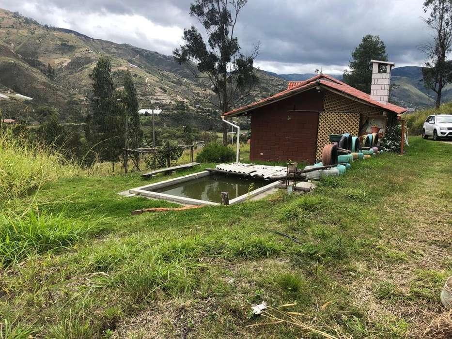 Vendo Terreno con Casa en Paute de 9000 m²
