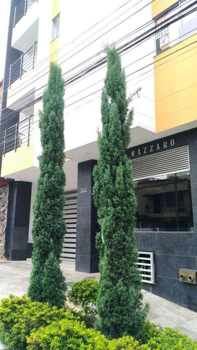 ESPECTACULAR <strong>apartamento</strong> SAN FRANCISCO EDIFICIO MAZARO
