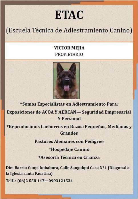 Escuela Técnica De Adiestramiento Canino