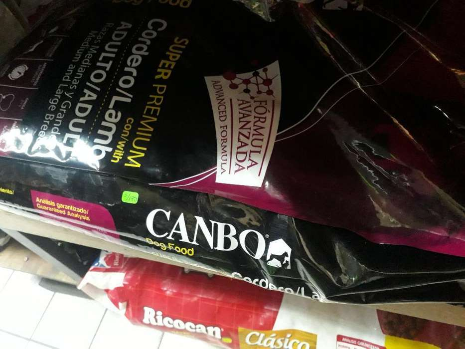 Canbo Adulto
