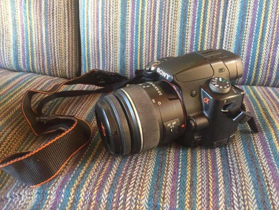 Cámara reflex Sony modelo A55