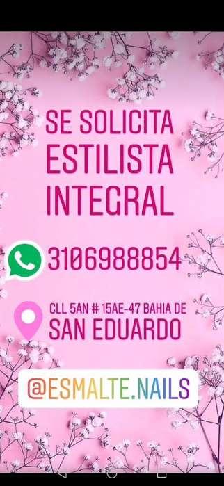 Estilista Integral