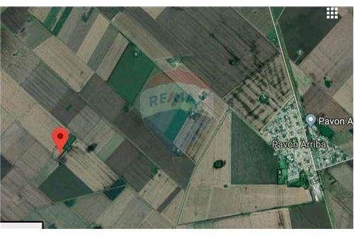 Venta campo en Pavón Arriba, provincia de Santa Fe