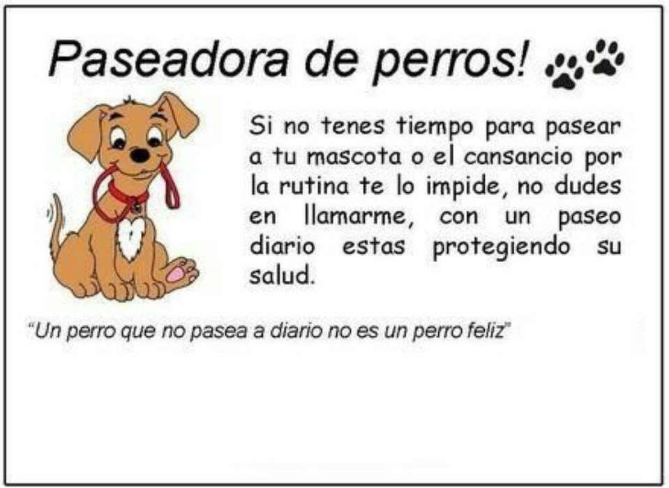 Servicio de Paseo Y Cuidado Canino
