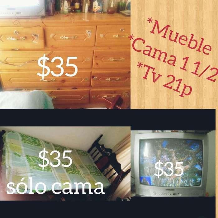 Cama Tv
