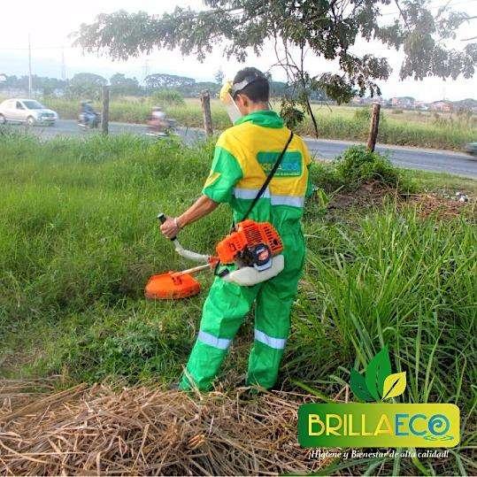 SERVICIOS DE LIMPIEZA PODA Y JARDINERÍA