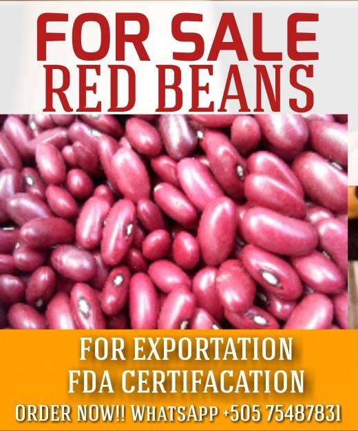 Red beans for sale!