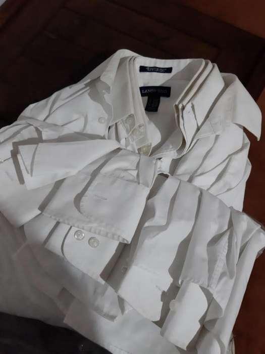 4 <strong>camisa</strong>s de hombre blancas talle 38 importadas