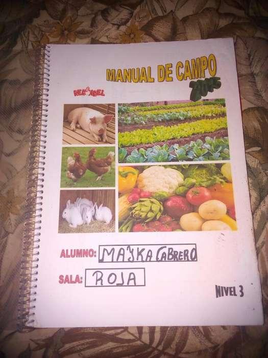 Manual de Campo