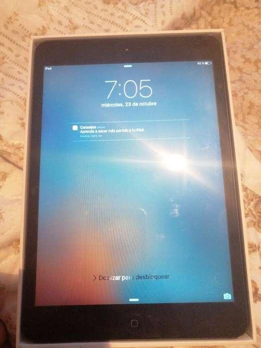 iPad Mini Muy Buen Estado