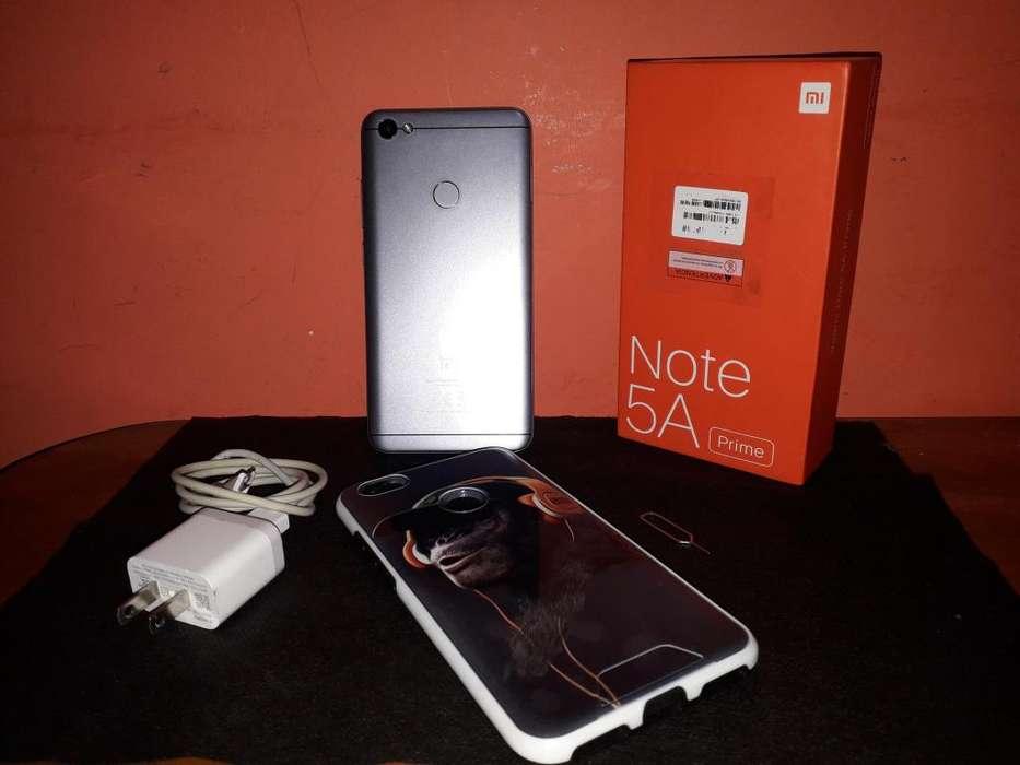 Celular XIAOMI Redmi Note 5A Prime.