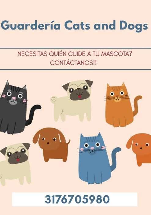 Guarderia para <strong>perros</strong> Y Gatos