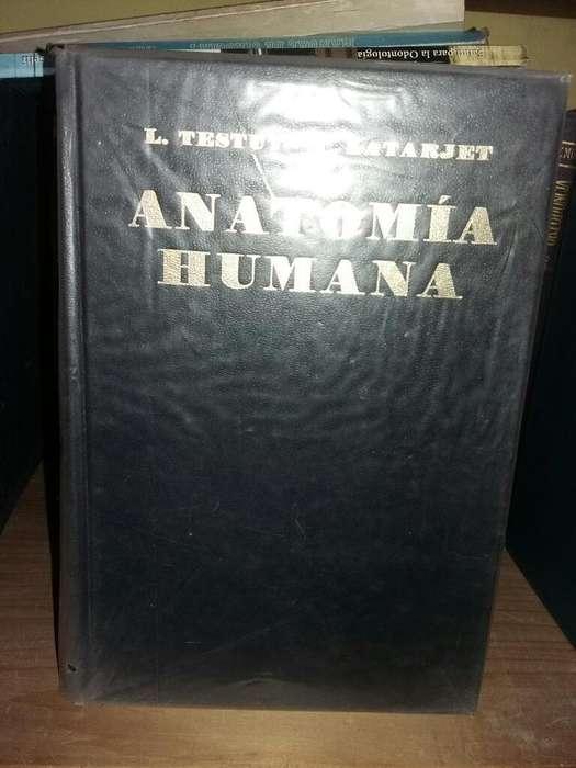 Libro Anatomía Humana Testut Latarjet Tomo I