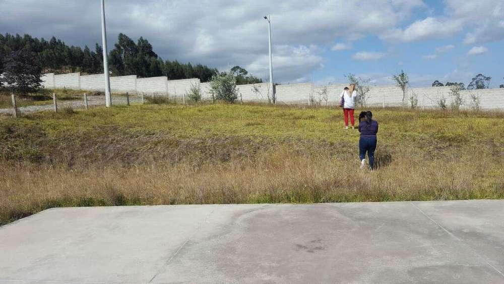 terreno en venta localizado en guayllabamba sector machangui