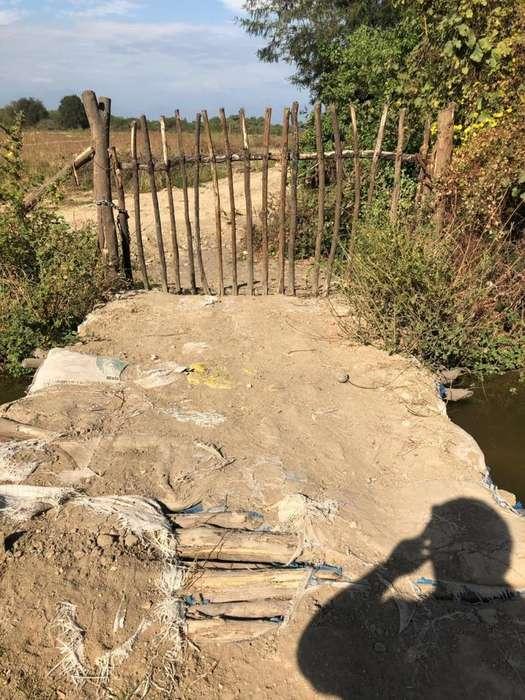 5.4 hectáreas en Zona Industrial - Tambogrande - Piura