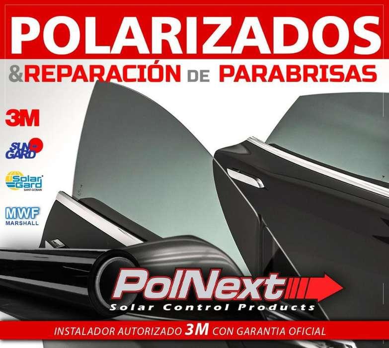 Polarizado de Autos