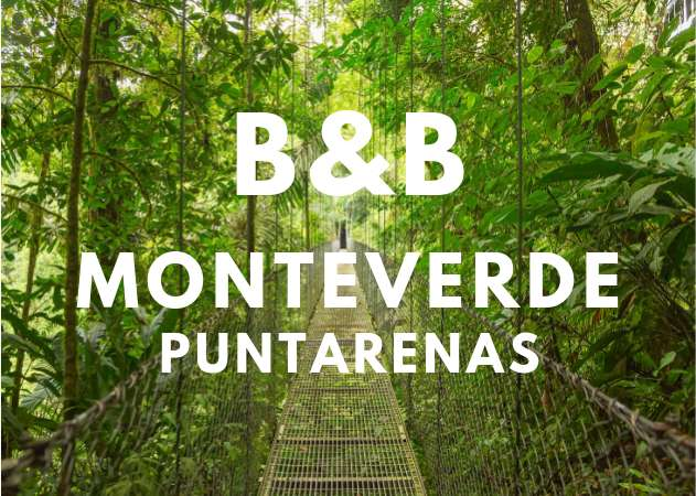 BED & BREAKFAST EN MONTEVERDE EN VENTA