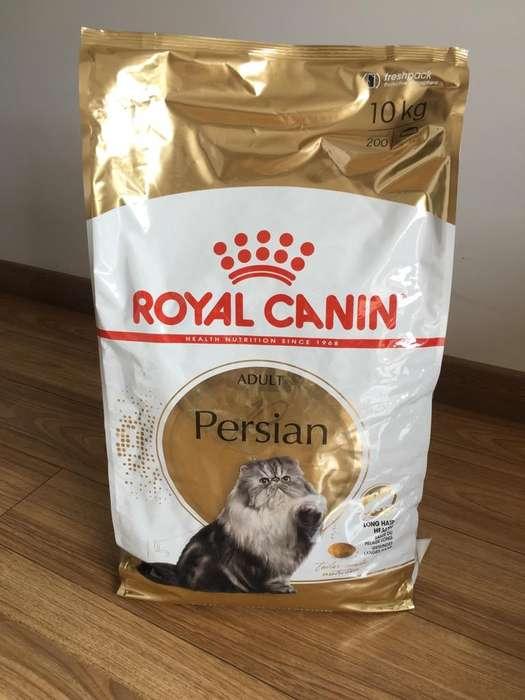 Royal Canin Gato Persa 10 Kg