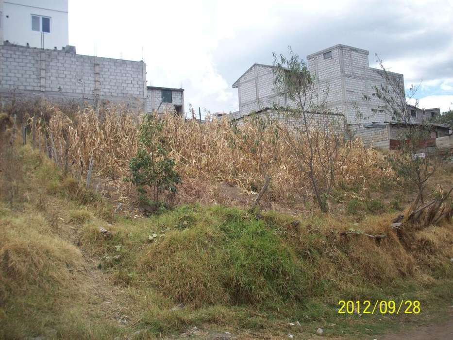Venta de Terreno en la Planada, Colinas del Norte, El Condado